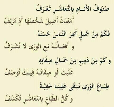 Pin By Razan Masri On بعضا من جمال الشعر Spirit Quotes Wise Quotes Words Quotes