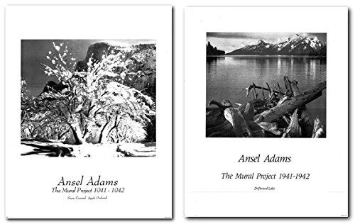 Pin On Ansel Adams Wall Decor Art Print