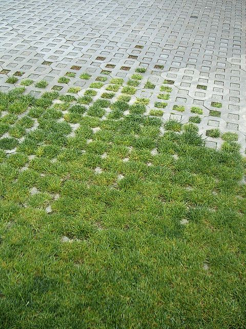 Pinterest the world s catalog of ideas for Green pavers