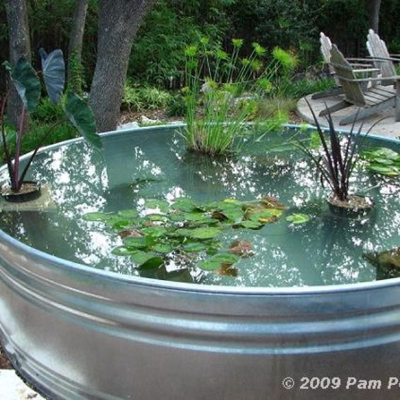 Stock-tank pond.. Neat idea!
