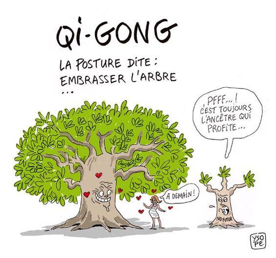 """Résultat de recherche d'images pour """"arbre humour"""""""