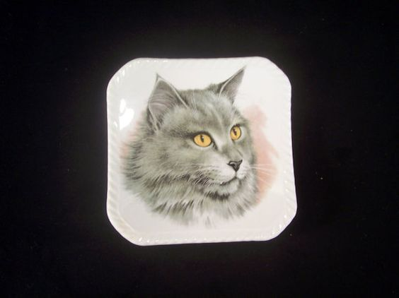 Vintage Persian Cat  Pin Dish  Royal Adderley   S134