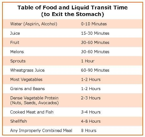Time table for food to exit body