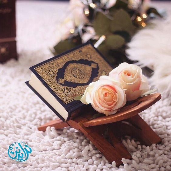 صور مصاحف 2019 اجمل خلفيات المصاحف 2019 صور المصحف الشريف للتصميم Quran Book Quran Wallpaper Holy Quran