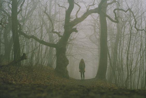 Untitled (film, krabbesholm forest) by nikolinelr, via Flickr. 2011.