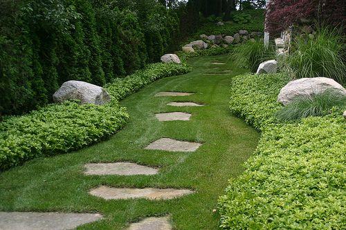 Img 5744 Landscape Edging Cool Landscapes Lawn Edging
