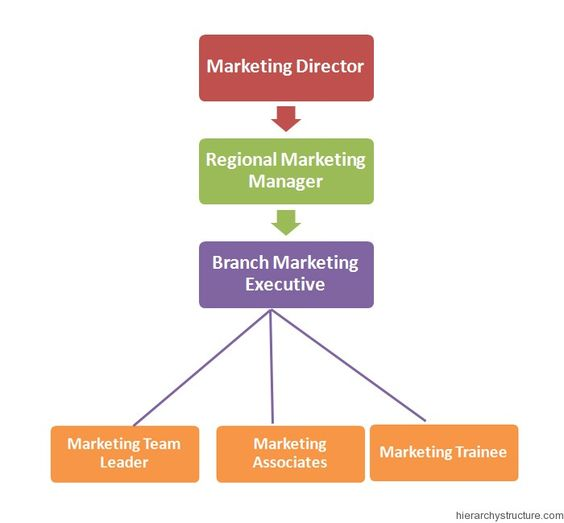Marketing Jobs Hierarchy  Jobs Hierarchy    Marketing Jobs
