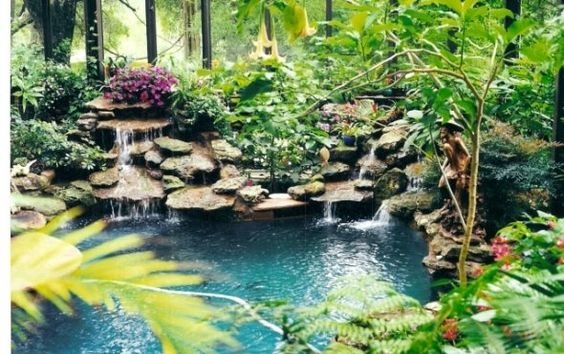 Greenhouses Pools And Tropical Gardens On Pinterest