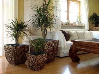 Casa Mina 3er Set Wasserhyazinthe Blumenkubel Ubertopfe