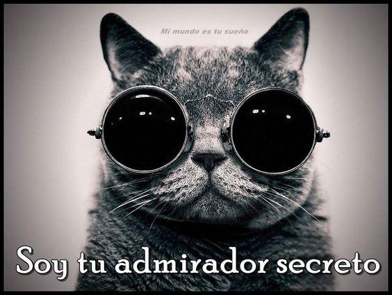 tu admirador secreto ijijj