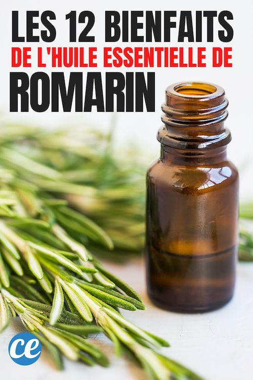 Le Romarin Rosmarinus Officinalis Est Un Arbuste A Feuilles Tres Fines Et P Huile Essentielle De Romarin Huiles Essentielles Pour Maigrir Huiles Essentielles