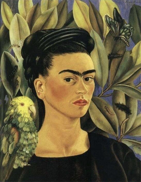 Pin De Daniel Ramirez En Frida Kahlo Frida Kahlo Autorretrato Frida Kahlo Pinturas Obras De Frida Kahlo
