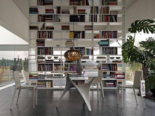 Modern Library In Living Room