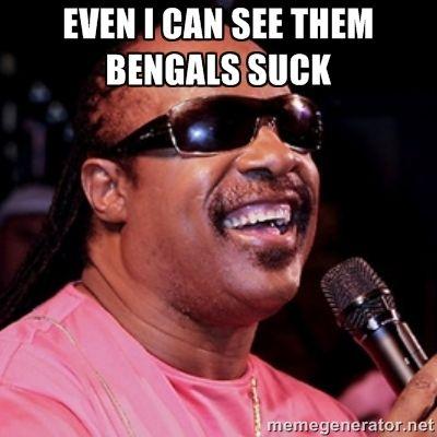 Stevie says Bengals suck