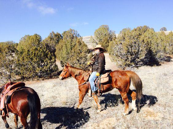 Man on horse