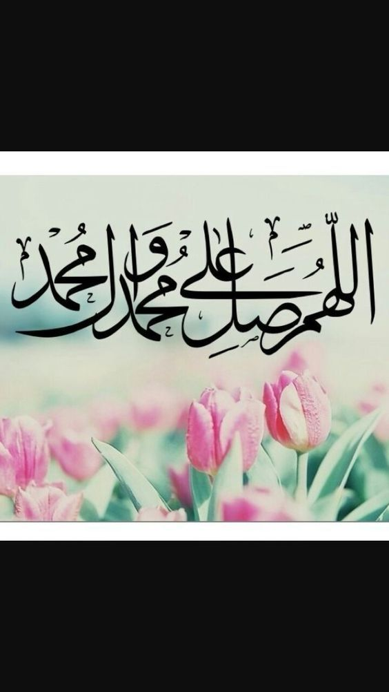 29 6k Followers 121 Following 1 804 Posts See Instagram Photos And Videos From Awashides Beautiful Islamic Quotes Quran Quotes Love Islamic Wallpaper