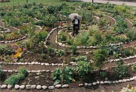 Labyrinth garden labyrinths and gardens on pinterest for Garden labyrinth designs