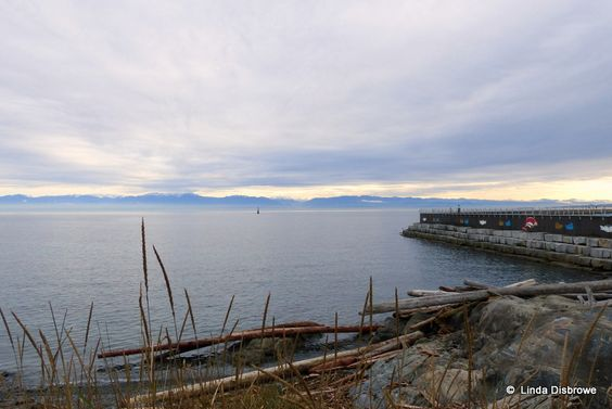 keeping an eye on the U.S.A. from Ogden Point B.C