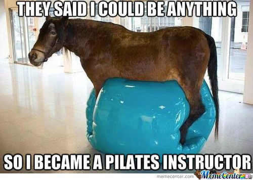 horse memes | Horse Memes. Best Collection of Funny Horse ...
