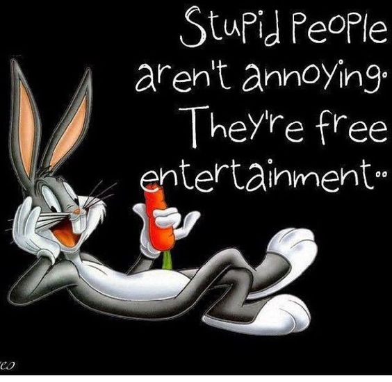 Stupid people aren't annoying, they're free entertainment!