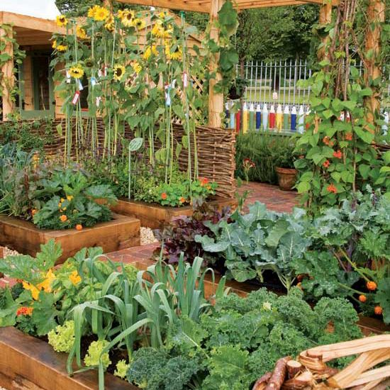 Earth news gardening and mother earth on pinterest for Gardening 4 less reviews