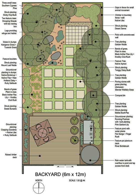 Local native plants can be used to create a unique and sustainable - sustainable garden design