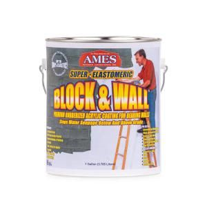 Ames Blue Max 1 Gal Basement Waterproofing Sealer Regular Grade Bmx1rg The Home Depot In 2020 Basement Waterproofing Paint Waterproofing Basement Stained Concrete