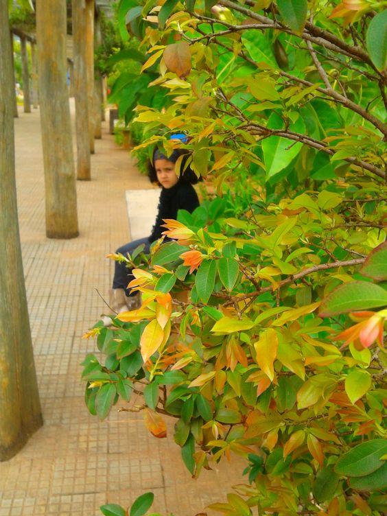 esconde-esconde (2)