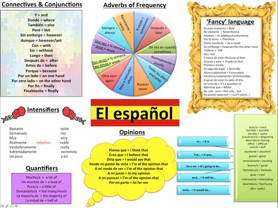 essay expressions spanish