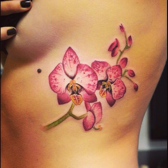 Tatouage orchid e tatoo pinterest - Orchideen tattoo vorlage ...