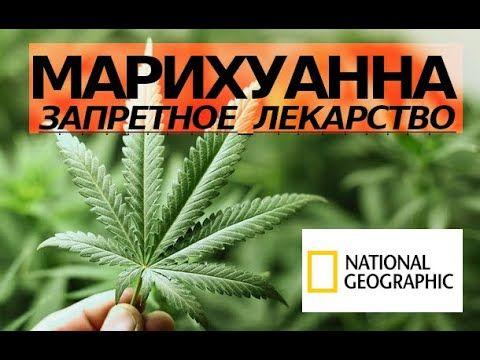 Документальный фильм марихуану i как лучше купить марихуану