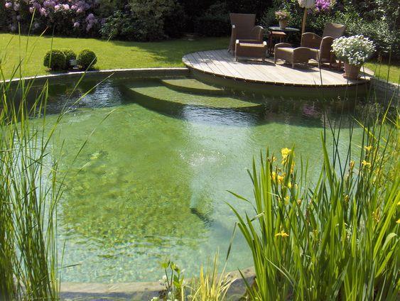 La Piscine Naturelle Est Basee Sur La Technique Du Lagunage Epuration De L Eau Par Les Plantes La Piscine Naturelle S Integre Parfaitement Dans To Zwemvijvers