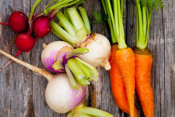 Obst und Gemüse richtig lagern