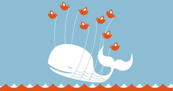 Whales: Whale Twitter S, Beautiful Whale, Error Whale, Capacity Twitter, Ohhh Twitter, Cartoon Twitter, Twitter Whale, Holy Whale