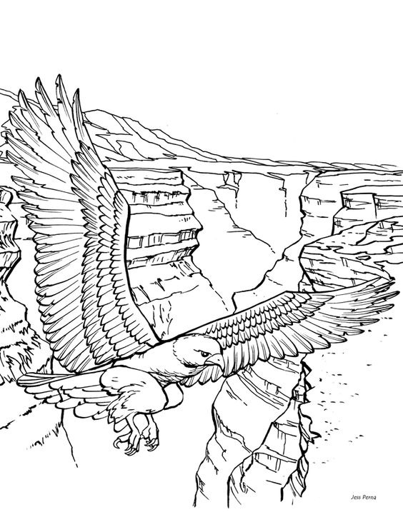 scenic coloring pages washington department of fish and wildlife coloring pages pinterest coloring books adult coloring and craft