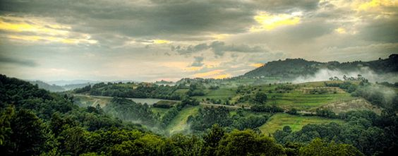 """TORAZO (Asturias)   If you thinking to visit Spain don't forget to book here! In the north of Spain , Asturias (TORAZO) visit this Hotel """" Los LLaureles"""" wwww.losllaureles.com  """"I love this place"""""""