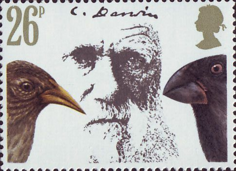 Death Centenary of Charles Darwin 26p Stamp (1982) Darwin, Cactus Ground Finch and Large Ground Finch