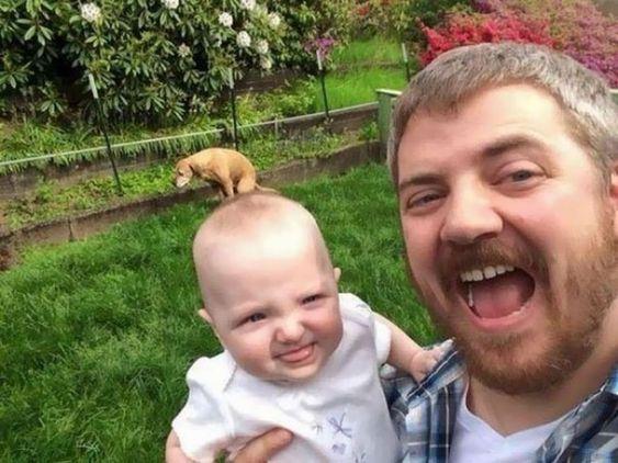 22 Times People Tried to Take Selfies and Failed Dramatically https://kaftipiperia.com/22-apistefta-apotychimenes-selfies-kai-oi-antidraseis-tou-kosmou/