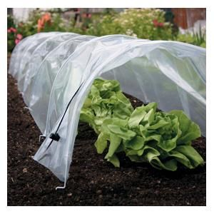 Covered with tough UV stabilised polyethylene sheeting, the tunnel forms a complete barrier to repel pests whilst retaining moisture and air, generating maximum warmth.  Easy Poly Tunnels - Harrod Horticultural (UK) http://www.harrodhorticultural.com/easy-poly-tunnels-pid7551.html