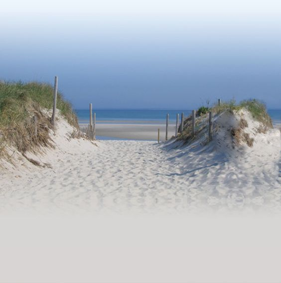Cape Cod, One Of My Favorite Childhood Summer Vacation