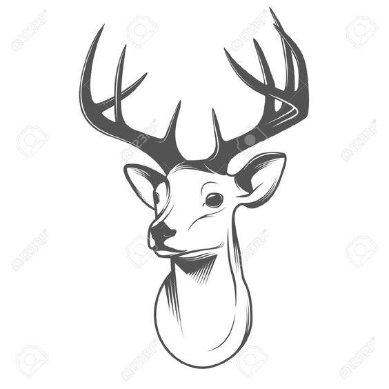 Reindeer head drawing - photo#14