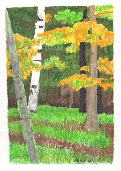 Original Drawing  From Cabin by bbythell on Etsy, $25.00
