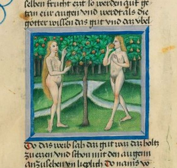 Furtmeyr-Bibel decorated by the Renaissance painter Furtmeyr Berthold of Regensburg (active between 1460 and 1501) is a German Bible containing the Old Testament, from Genesis to the books of Ruth. 1465-1470 Bavarian State Library