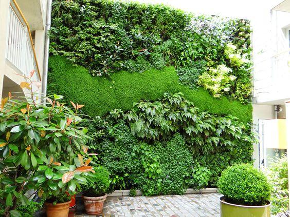 Mur végétal extérieur pour l'Hôtel Jules et Jim