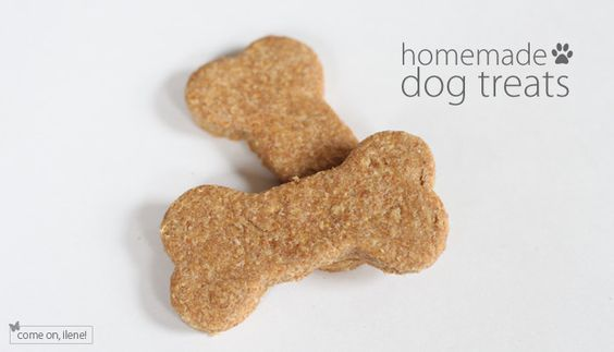 Homemade Dog Treats  •1 cup rolled oats  •1/3 cup margarine or butter  •1 cup boiling beef broth  •3/4 cup cornmeal  •2 teaspoons white sugar  •2 teaspoons beef bouillon granules  •1/2 cup milk  •1/2 cup peanut butter  •1 egg, beaten (or 2 eggs to make treats softer for older dogs)  •3 cups whole wheat flour
