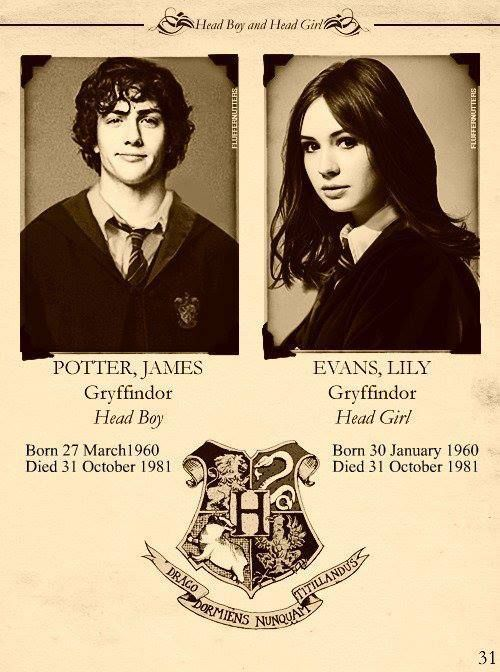 Pin By Leslie Schassen On Books Harry Potter 2 James Potter Harry Potter Parents Harry Potter Universal