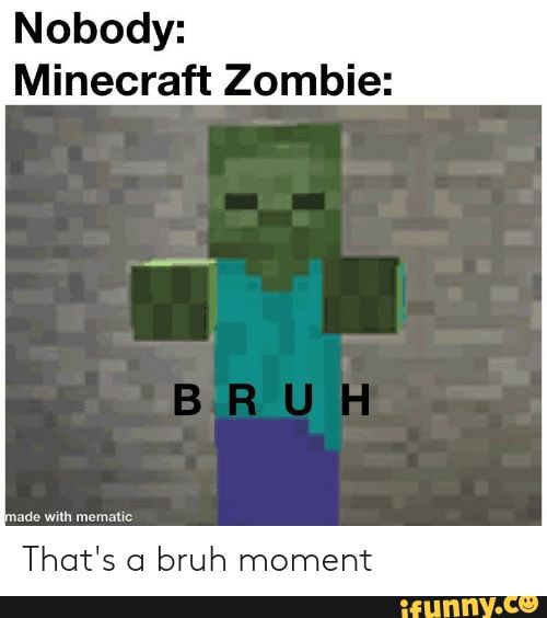 Nobody Minecraft Zombie That S C1 Bruh Moment Ifunny Minecraft Really Funny Memes Memes