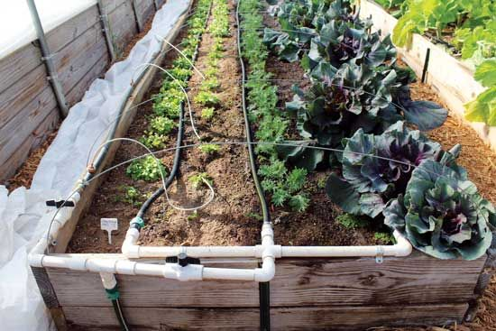How To Build A Drip Irrigation System Diy Garden Watering