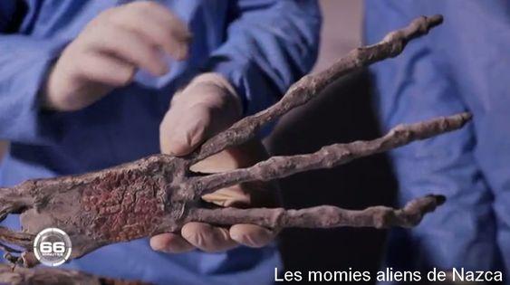 """Les Extraterrestres de Nasca-Alien Project-Magazine 66 minutes de M6 du 28.01.2018"""