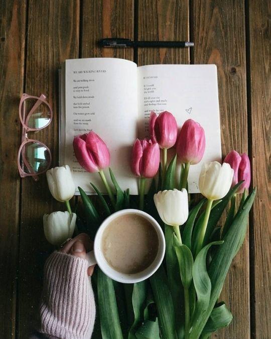 Pin By Maria Koyloyrh On Coffee Cafe Coffee Flower Coffee And Books Aesthetic Coffee